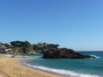 Muchos granitos de arena hacen una playa