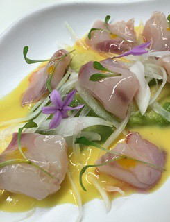 Ceviche de Corvina by Tapas 24